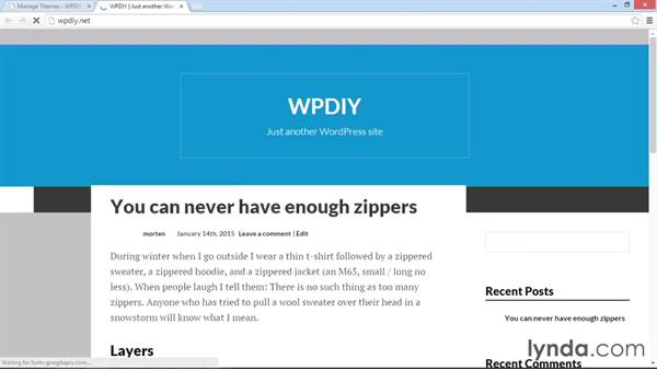 Themes and plugins: WordPress DIY: Setting Up WordPress