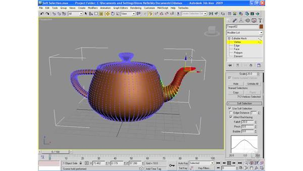 Soft Selection: 3ds Max 2009 Essential Training