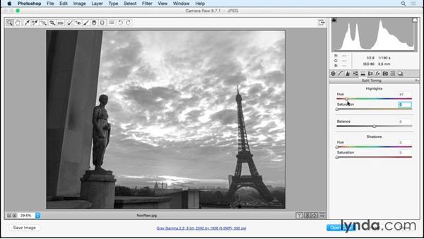 Highlights of Camera Raw: Photoshop Insider Training: Rethinking the Essentials