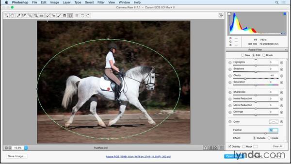 Making selective edits: Photoshop Insider Training: Rethinking the Essentials