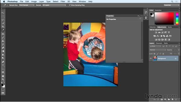 Adjustment layers: Photoshop Insider Training: Rethinking the Essentials