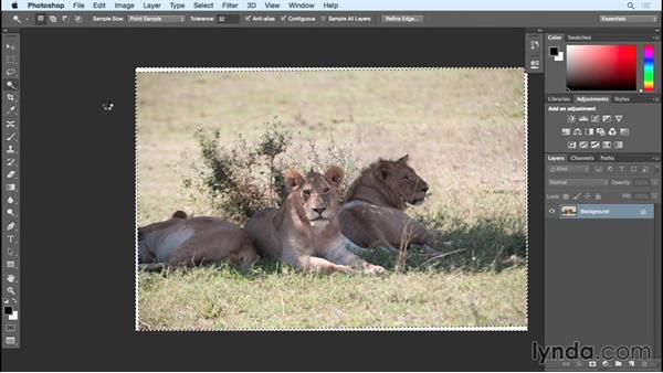 Finalizing layers for image output: Photoshop Insider Training: Rethinking the Essentials