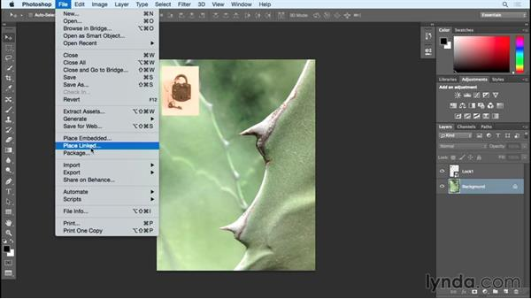 Linked vs. embeded Smart Objects: Photoshop Insider Training: Rethinking the Essentials