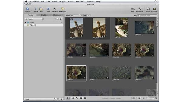Following the standard Aperture workflow: Aperture 2 Essential Training
