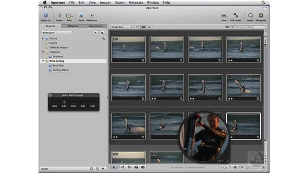 Organizing a series with Stacks: Aperture 2 Essential Training