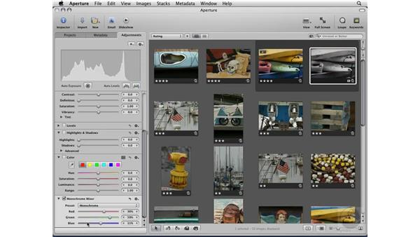 Defining the difference between master and version files: Aperture 2 Essential Training