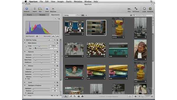 Working with the Adjustments tab: Aperture 2 Essential Training