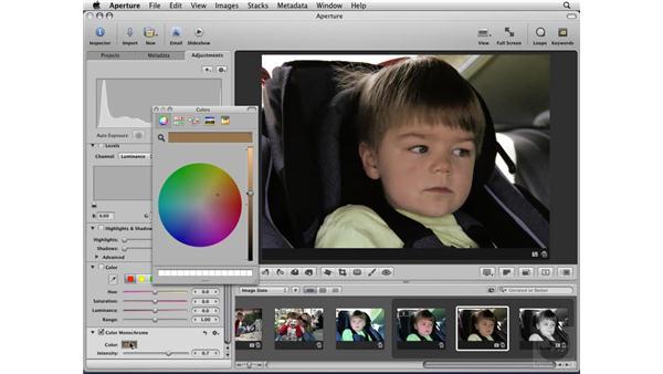 Using Monochrome, Color Monochrome, and Sepia: Aperture 2 Essential Training