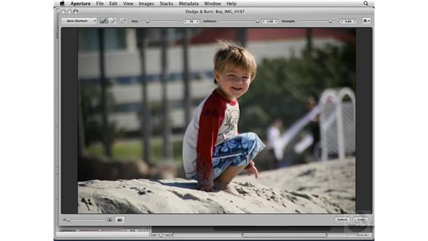 Using the Edit plug-ins: Aperture 2 Essential Training