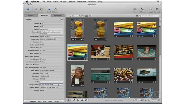Backing up with vaults: Aperture 2 Essential Training