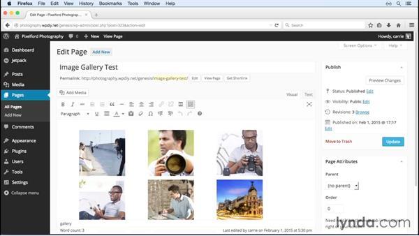 Enabling Jetpack image features: WordPress and Genesis DIY: Showcasing Photography