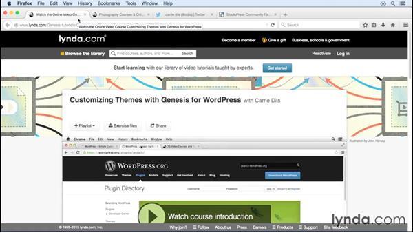 Learn about WordPress with lynda.com: WordPress and Genesis DIY: Showcasing Photography
