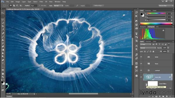Enhancing clarity with the High Pass filter: Enhancing Underwater Photos with Photoshop