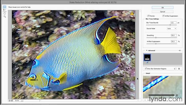 Sharpening a moving target with Shake Reduction: Enhancing Underwater Photos with Photoshop