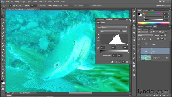 The quick-and-dirty fix: Auto Levels and Vibrance: Enhancing Underwater Photos with Photoshop