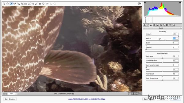 Correcting color, tone, and distortion: Enhancing Underwater Photos with Photoshop
