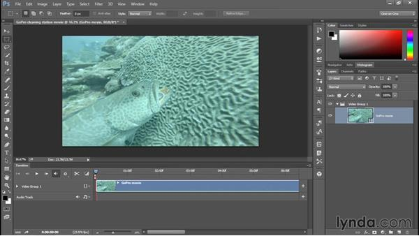 Opening and cropping a movie in Photoshop: Enhancing Underwater Photos with Photoshop
