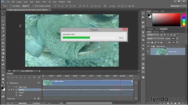 Rendering the first edit of your movie: Enhancing Underwater Photos with Photoshop