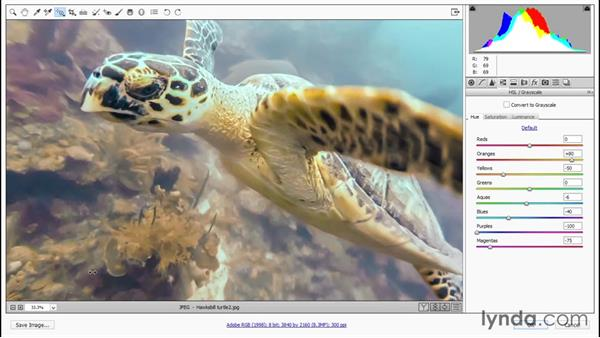 Correcting color balance on a color-by-color basis: Enhancing Underwater Photos with Photoshop