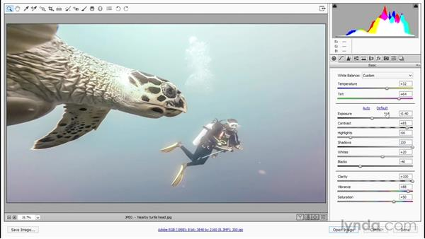Working from the last-applied settings: Enhancing Underwater Photos with Photoshop