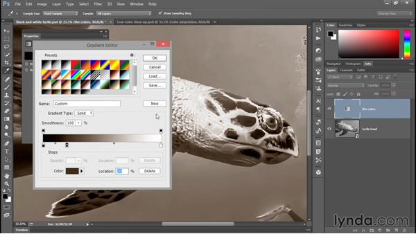 The best way to sepia-tone a photograph: Enhancing Underwater Photos with Photoshop