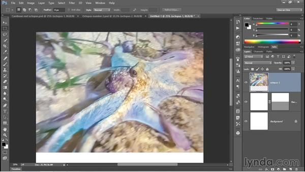 Merging two photos into one Facebook-friendly image: Enhancing Underwater Photos with Photoshop