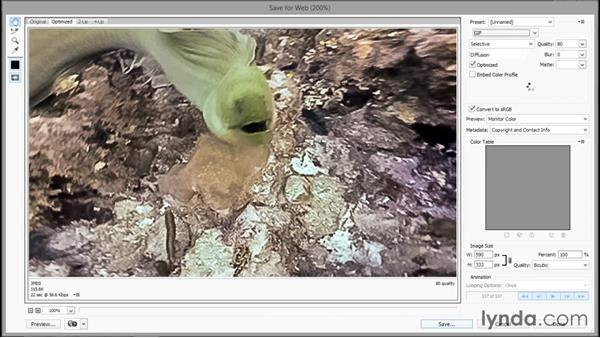 Exporting a seamlessly looping animated GIF: Enhancing Underwater Photos with Photoshop