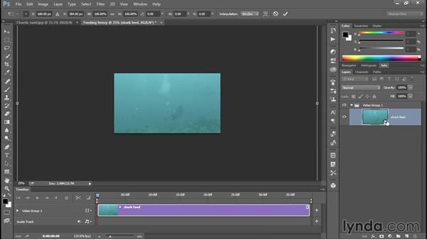 Zooming in and out of a movie in post: Enhancing Underwater Photos with Photoshop