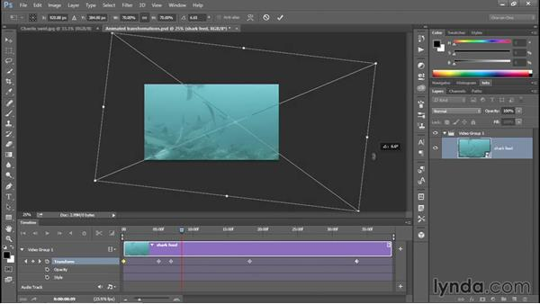 Panning and pivoting with Transform keyframes: Enhancing Underwater Photos with Photoshop