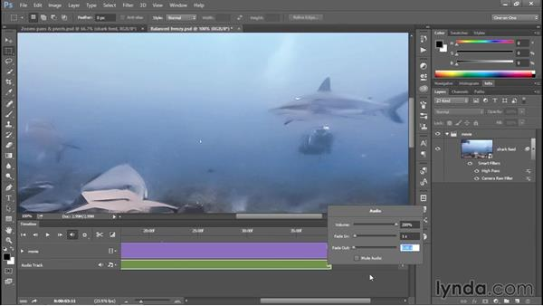 Adding a soundtrack and a fade to black: Enhancing Underwater Photos with Photoshop