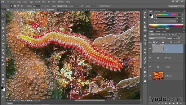 Smoothing an oversharp image with High Pass: Enhancing Underwater Photos with Photoshop