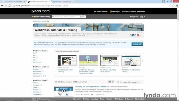 Learn about WordPress with lynda.com: WordPress DIY: Showcasing Photography