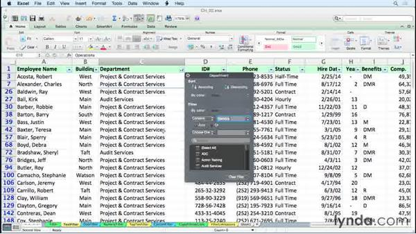 Using text filters: Excel 2011 for the Mac: Managing and Analyzing Data
