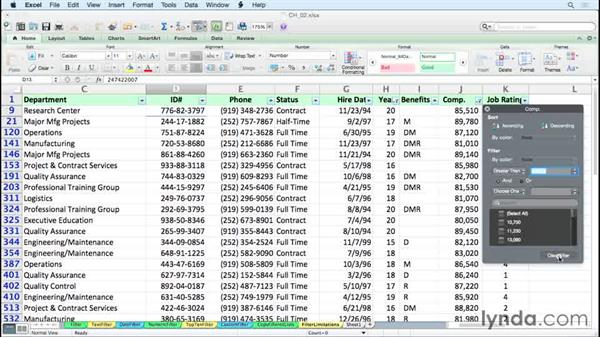 Recognizing the limitations of standard filtering: Excel 2011 for the Mac: Managing and Analyzing Data