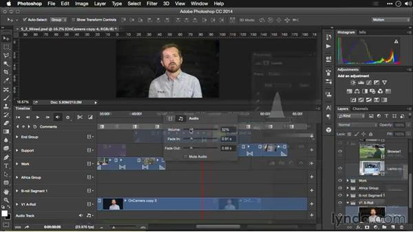 What you should know before watching this course: Editing Video and Creating Slideshows with Photoshop CC