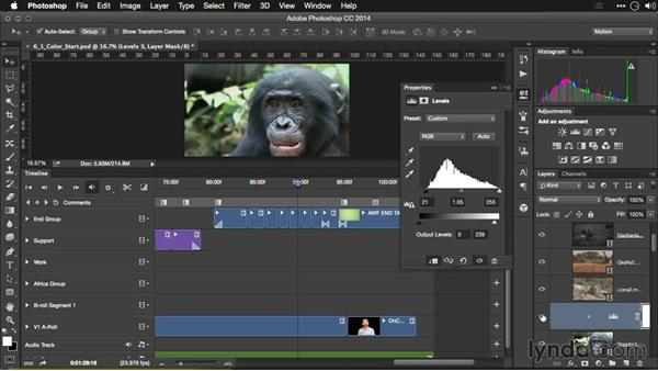 Fixing overexposed footage: Editing Video and Creating Slideshows with Photoshop CC