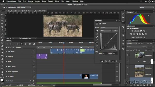 Adjusting the contrast of video footage: Editing Video and Creating Slideshows with Photoshop CC
