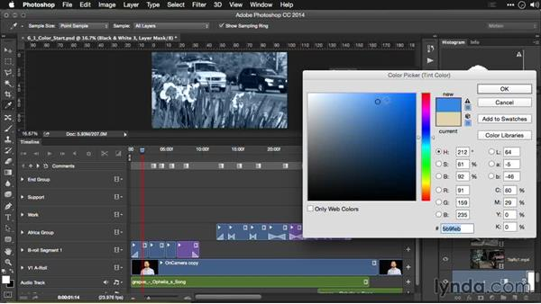 Creating black-and-white effects: Editing Video and Creating Slideshows with Photoshop CC