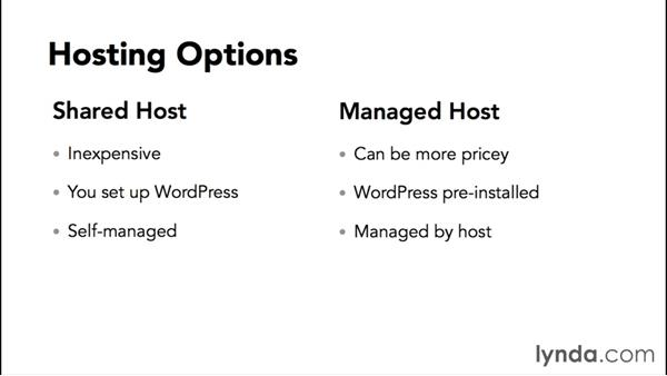 Setting up WordPress on a live host: WordPress Workflows