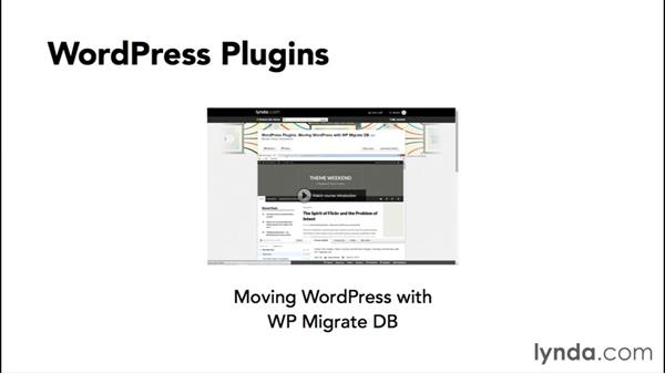 Populating the site with real content: WordPress Workflows