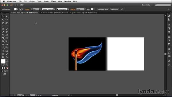 Practicing on your own time: Creating Gradient Meshes with Illustrator