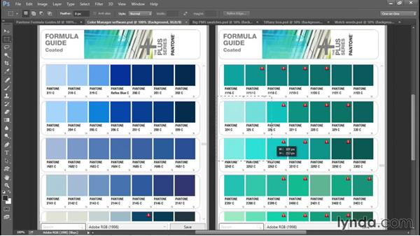 Choosing the perfect spot colors: Creating and Adapting a Logo
