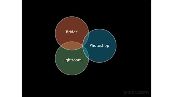 Photographic workflow puzzle: Lightroom 2 Essential Training