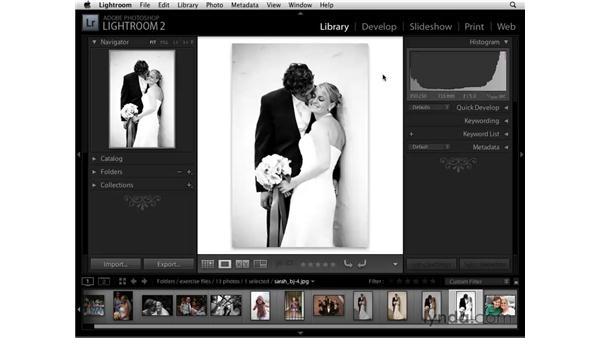 Changing the image background: Lightroom 2 Essential Training