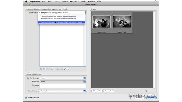 Importing photos from a folder: Lightroom 2 Essential Training