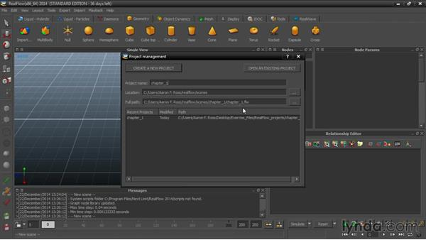 Creating and setting up RealFlow projects: Up and Running with RealFlow