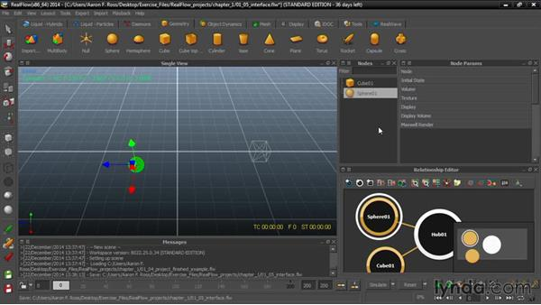 Browsing the interface: Up and Running with RealFlow
