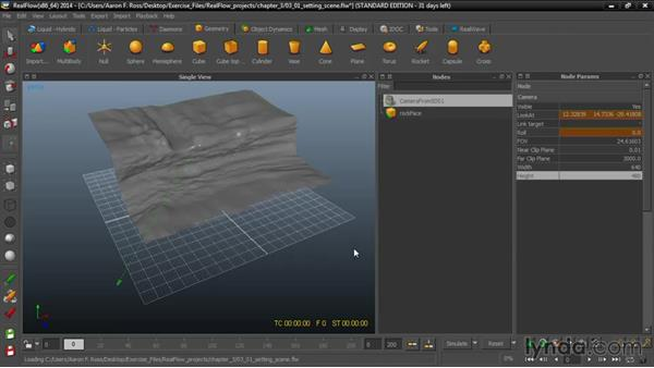 Setting the scene: Up and Running with RealFlow