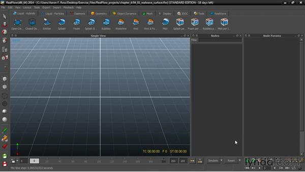 Creating a RealWave surface: Up and Running with RealFlow