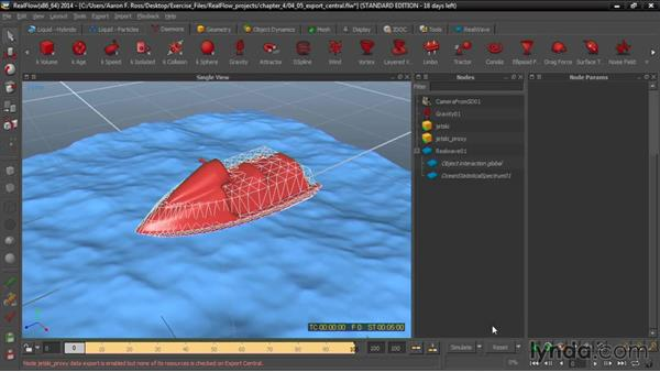 Choosing Export Central cache outputs: Up and Running with RealFlow